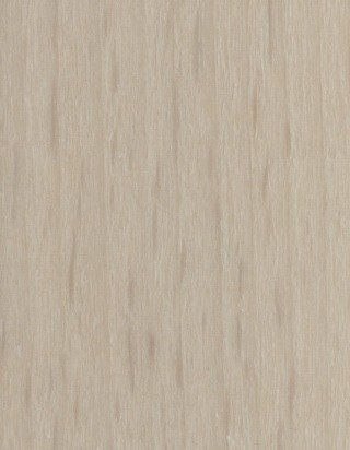 Hêtre blanchi